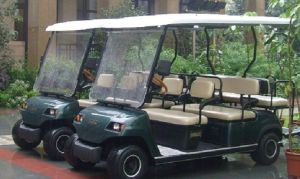 Cheap 6 Seater Electric Buggy for Adults pictures & photos