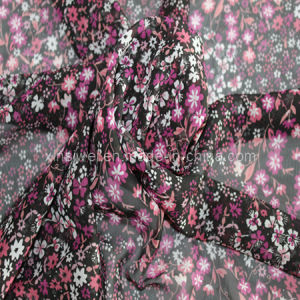 Chiffon Fabric (SL12049-1) pictures & photos