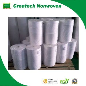 Non- Woven Fabric (Greatech02-037)