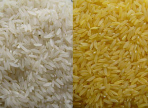 Best Quality Nutrient Rice Machine pictures & photos