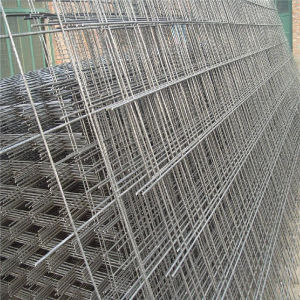 Galvanized Welded Mesh Panel pictures & photos