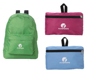 Useful Nice Foldable Bag for Travel (FS12-A105)