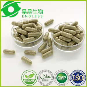 OEM Skin Care High Protein Malunggay Powder Capsule pictures & photos