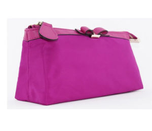 Fashion Nylon Waterproof Wash Bag (CS2273) pictures & photos