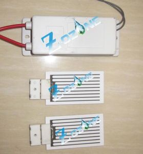 24V 7g Ozone Generator Used with Ceramic Ozone Plate pictures & photos