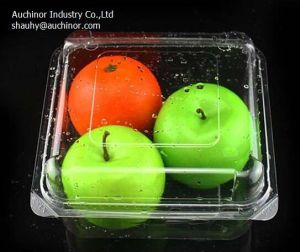 Blister Disposable Plastic Cake Container Cheese Packing Box Pastry Packaging pictures & photos