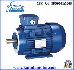 0.25 Kw Three Phase Induction Starter Electric Motor (Y2-711-4-B14) pictures & photos