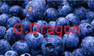 IQF (Individual Quick Freezin) Wild Organic Blueberries pictures & photos