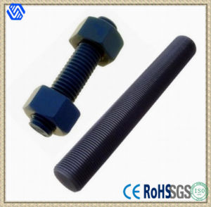 Stud Bolt with 2h Hex Nuts pictures & photos