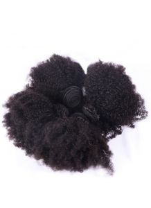 Afro Kinky Curly Virgin Raw 100% Human Hair Bundles Fast Shipping Afro Kinky Curly Hair Extensions pictures & photos