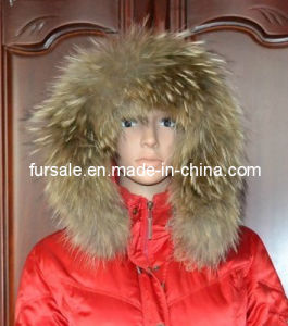 Women′s Winter Coat Raccoon Fur Trimming