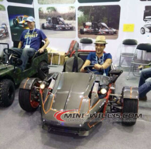 Quad Bike/ Ztr/UTV/Car pictures & photos