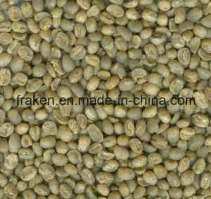 High Qualtiy Chlorogenic Acid Green Coffee Bean Extract pictures & photos