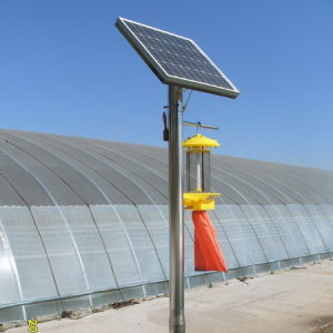 Solar Agriculture Fly Insect Killer Light pictures & photos