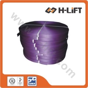 Polyester Webbing for Safety Factor 7: 1 Webbing Sling pictures & photos