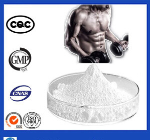 Decanoate Testosterone Testosterone Deca Powder Recipes for Bodybuilding pictures & photos
