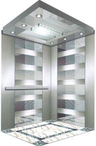 Professional Home Hydraulic Villa Elevator (RLS-107) pictures & photos