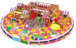 Kids Commercial Amusement Park for Jungle Gym (TY-14002) pictures & photos