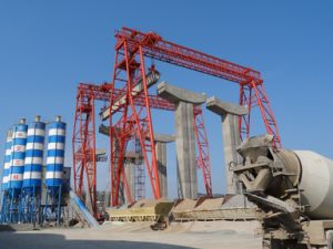 Truss Double Girder Portal Cranes (DCS80t-34m-36m) pictures & photos
