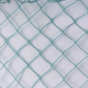 100% Virgin HDPE Anti-Bird Plastic Mesh Netting pictures & photos
