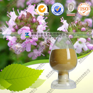 High Quality Natural Rosemary Extract Rosmarinic Acid pictures & photos
