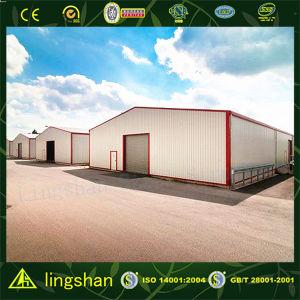 Steel Warehous Buildings (L-S-005) pictures & photos