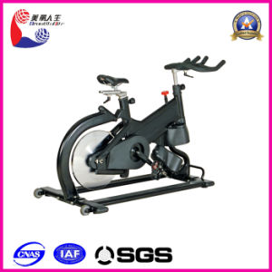 Spin Bike, Sport Bike, Mini Fitness Bike (lk-6007)