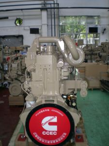 Cummins Nta855 Kta19 Kta38 Diesel Engine pictures & photos