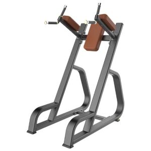 2015 Newest Fitness Machine Vertical Knees up DIP (SD1029) pictures & photos