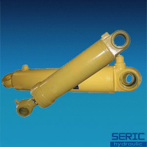 Hydraulic Cylinder for Dumping Car pictures & photos