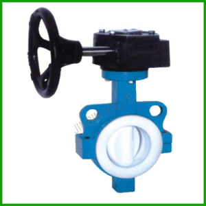 Worm Gear Wafer Butterfly Valve PTFE Lined pictures & photos