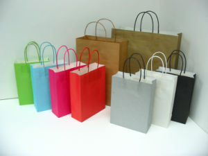 Different Style Wholesale Paper Gift Bags for Gift Promotional (FLP-8912) pictures & photos