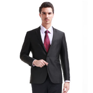New Stylish Modern Women Business Suits 2014 Lastesr Fashion (W0306)