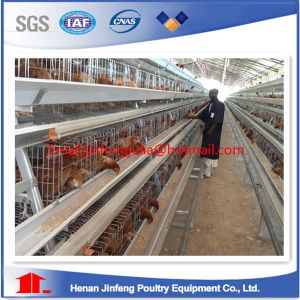 Africa Super Quality Chicken Cage pictures & photos