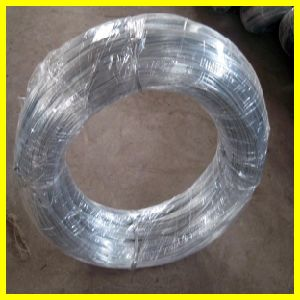 Factory Galvanized Iron Wire pictures & photos