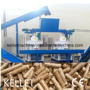 2 T/H Biomass Pellet Plant/Rice Hust Pellet Plant