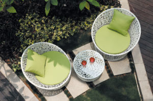Classical White Wicker Coffee Sofa Chat Set (BZ-SF042)