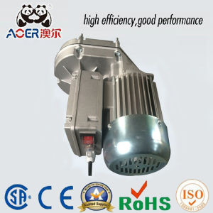 China variable speed low rpm gear electric motor china for Low rpm electric motor