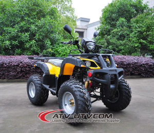 Gas-Powered Gy6-150cc, 4 Stroke ATV pictures & photos