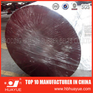 High Quality Ep Ore Conveyor Belt pictures & photos