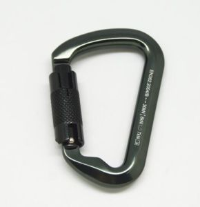 Shaped Aluminum Screwgate Lock Carabiner Alloy Locking Clip Camping Spring Snap Hook Keychain Hiking pictures & photos