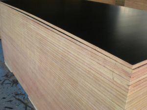 Poplar Core Film Faced Plywood (17mm)
