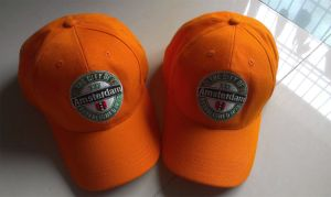 Sports Cap for Promotional Purposes (014) pictures & photos