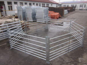 Galvanized Customized Sheep Fence on Sale pictures & photos