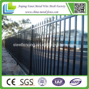 High Quality Black Painted Ornamental Wrought Iron Fence pictures & photos