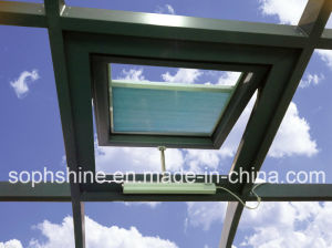 Auto Skylight with Double Hollow Glass Built in Cellular Shades for Sunlight Room Roof pictures & photos