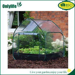 Onlylife Waterproof PVC Plastic Sheet Transparent Garden Greenhouse Vegetable Growing pictures & photos