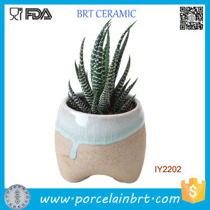 Original Ceramic Plant Little Garden Flower Pot pictures & photos