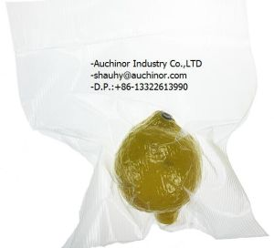 LDPE Disoppable Fresh Food Vacuum Bag with Zipper Lock for Freezer Storage Bag pictures & photos