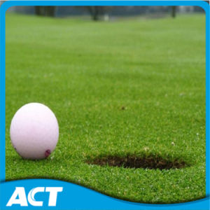 Golf Synthetic Grass for Golf Lawn G13 pictures & photos